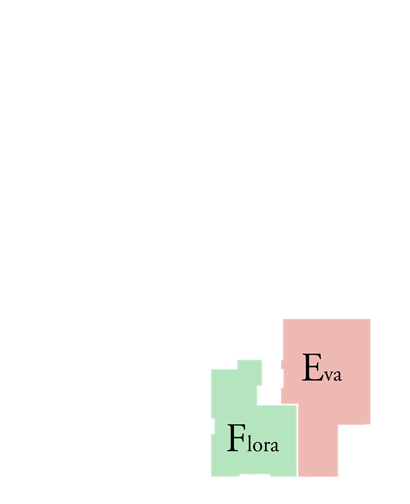 Typical Type E & F